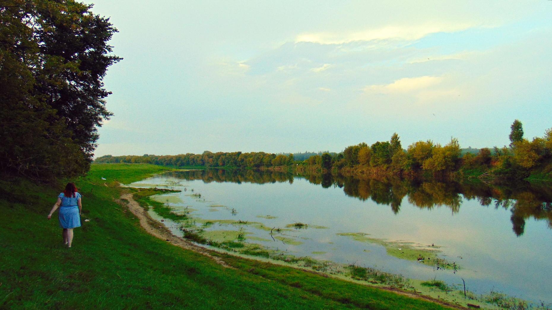 Summer landscape Image